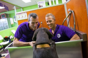 Behind the Business Plan: Wag 'N Wash