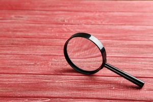 Criminal Background Checks: What's Legal for Employers?