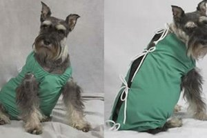 scrubs-for-pets-11070802