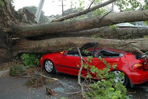 hurrican-damage-110826-02