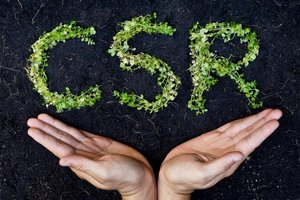 Why You Shouldn't Jump on the CSR Bandwagon