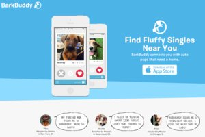 Tinder for pet adoption