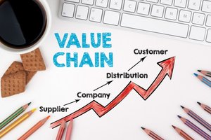 Value Chain Analysis: Definition and Examples