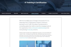 Skillsoft: Training Options, Large And Small
