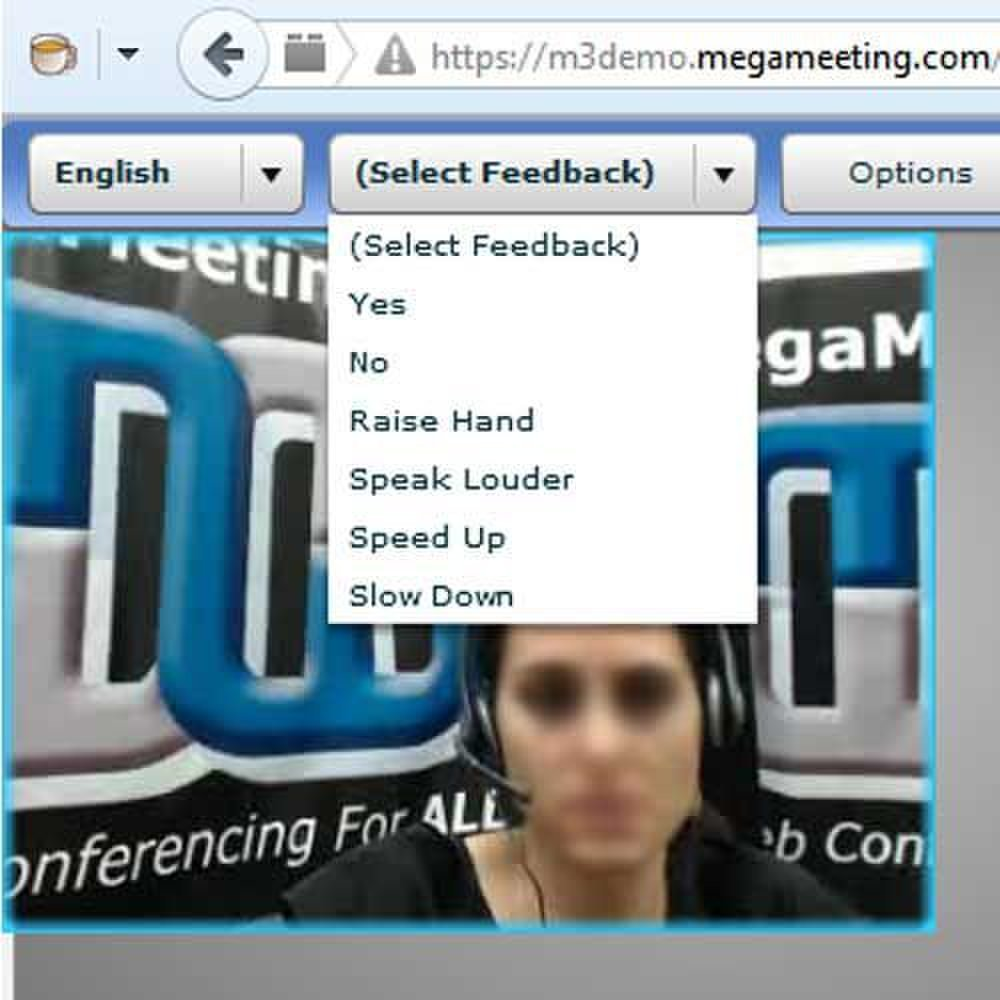 MegaMeeting image: Attendees can raise hands, answer yes or no, and ask the presenter to speed up or slow down.