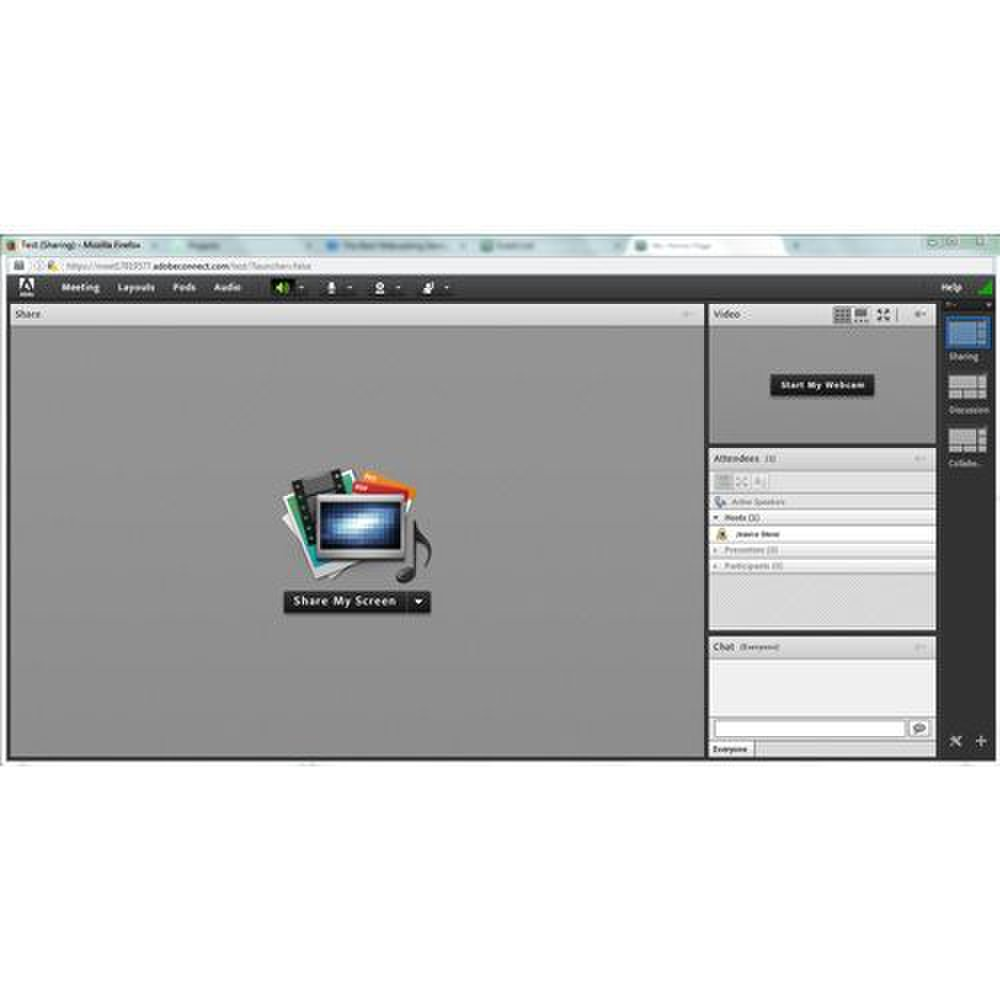 Adobe Connect image: You can customize the layout of the screen to fit your presentation.