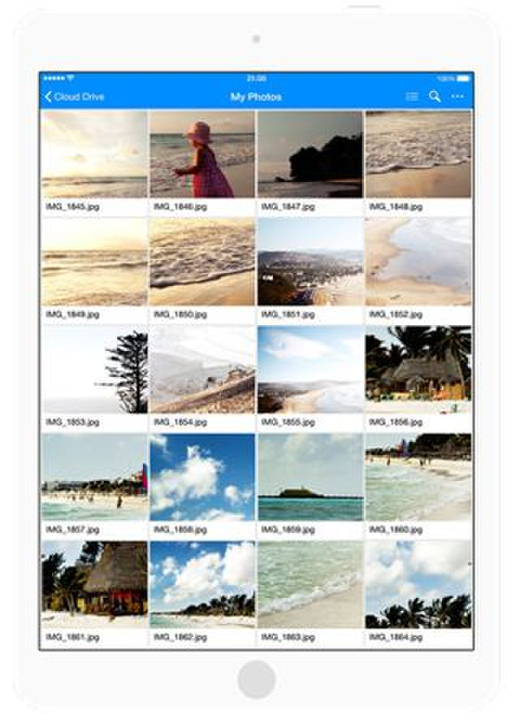 Amazon Drive image: Photos saved to this cloud service can be viewed as thumbnails in a gallery format.