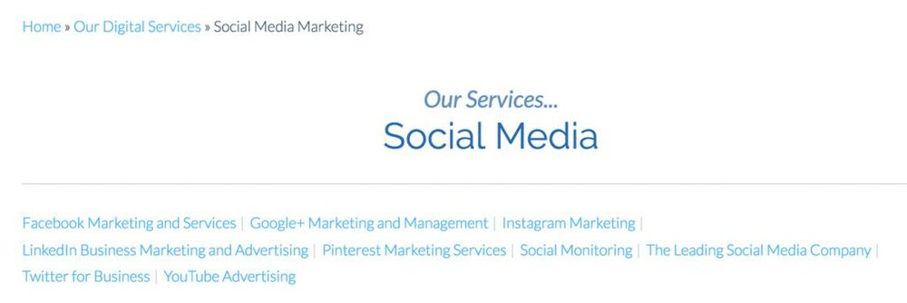 WebiMax image: This service works with professional social platforms including LinkedIn and Google+.