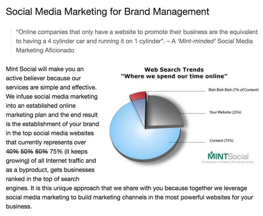 Mint Social image: This service helps you manage your social media campaigns.