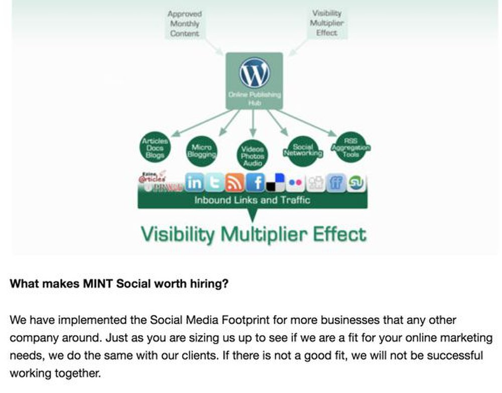 Mint Social image: Before you begin working with this service, Mint Social analyzes whether or not you will be a good fit working together.
