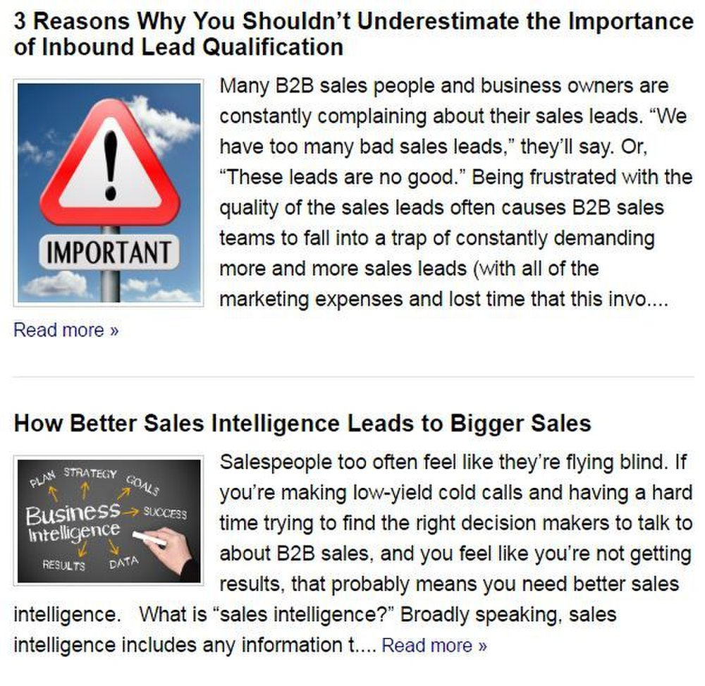 Strategic Sales & Marketing image: You can read several articles about lead generation on the company's website.