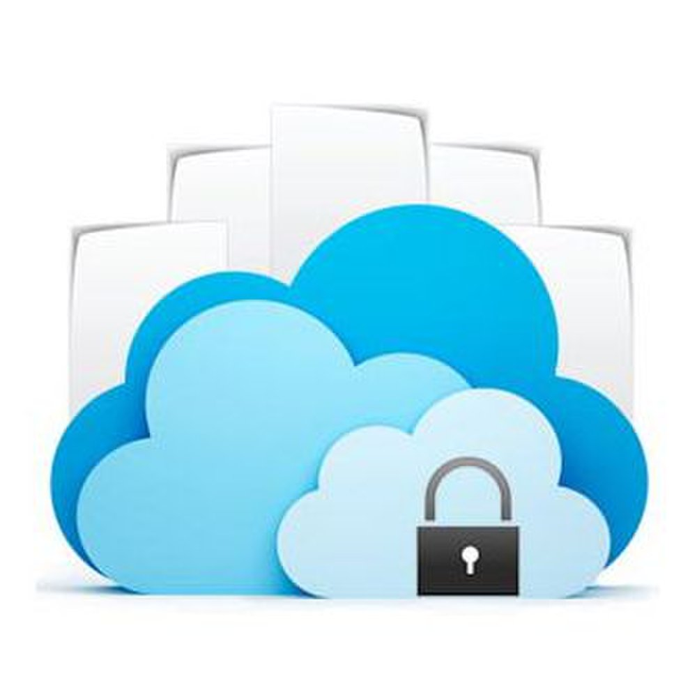 Docufree image: Secure access like password protection and tracked data access is built into Docufree's cloud-based retrieval system.