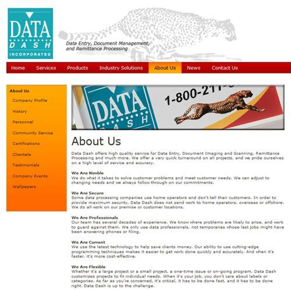 Data Dash image: Data Dash's process offers flexibility and has excellent customer support.