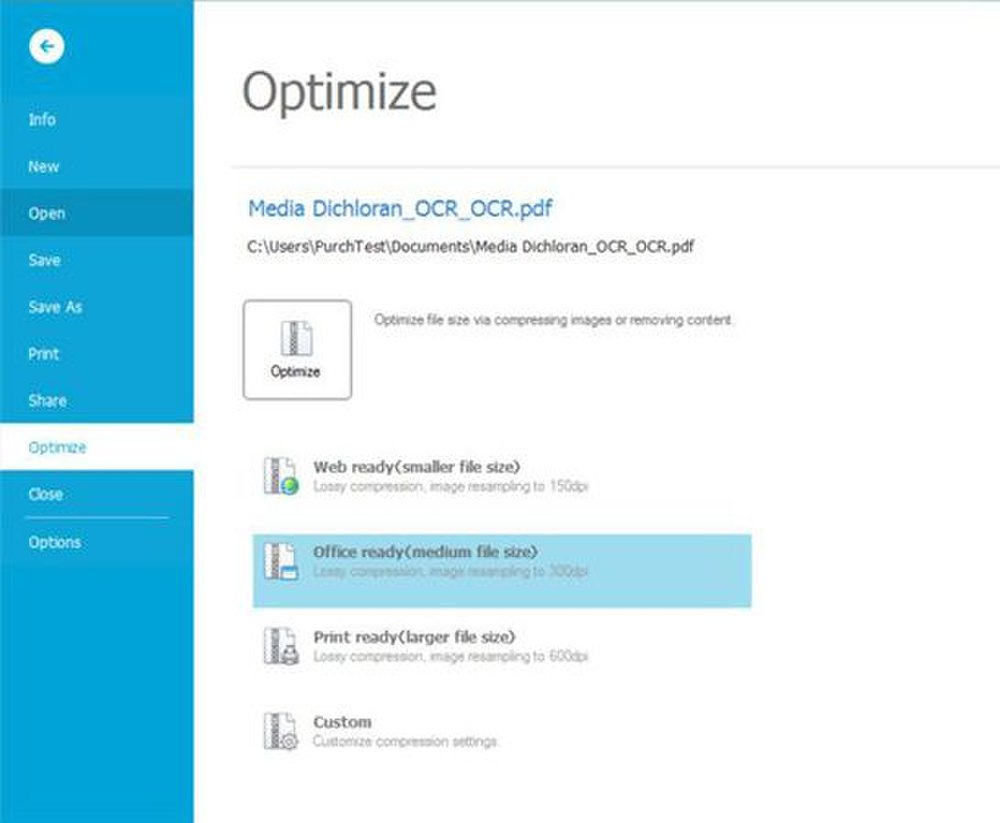 Lightning PDF Professional image: You can either optimize a PDF to your own specifications or use ones already configured by the software.