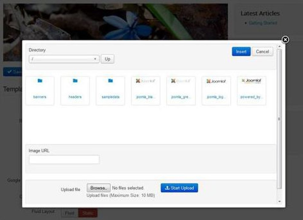 Joomla image: You can upload images, including logos, to use on your website.
