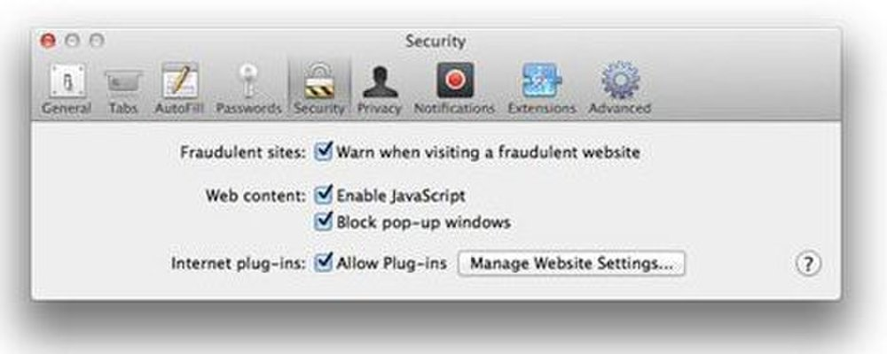 Dragon Professional image: Once you have downloaded the software you can set security and other preferences.