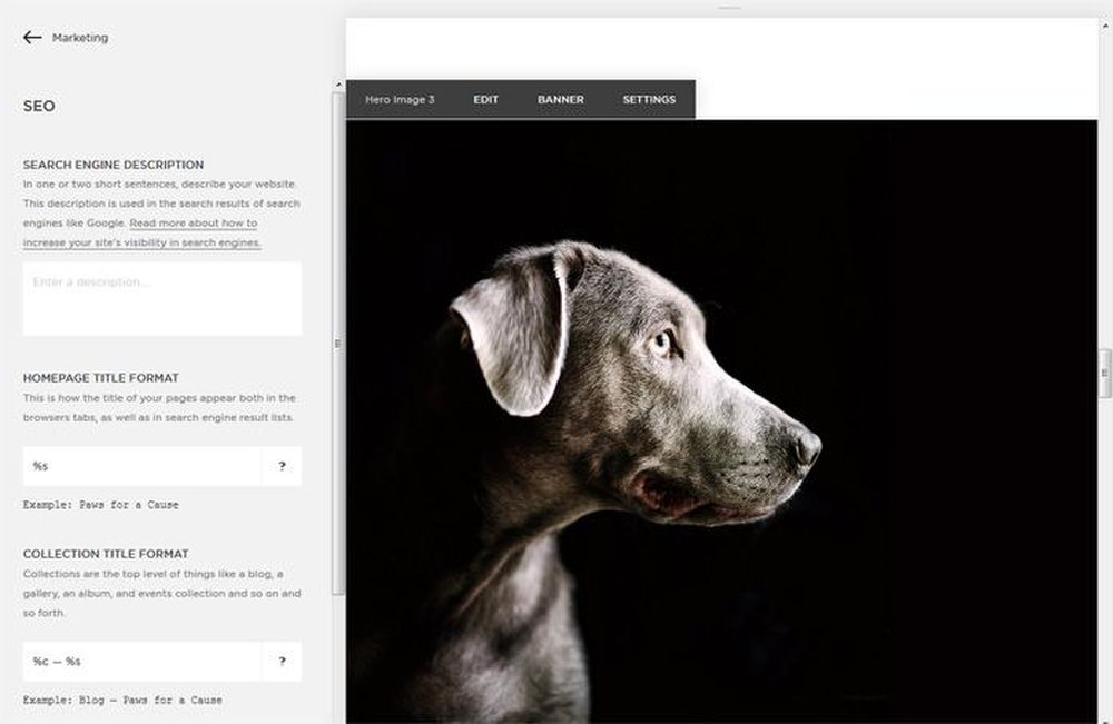 With Squarespace, you can easily add SEO metatags.