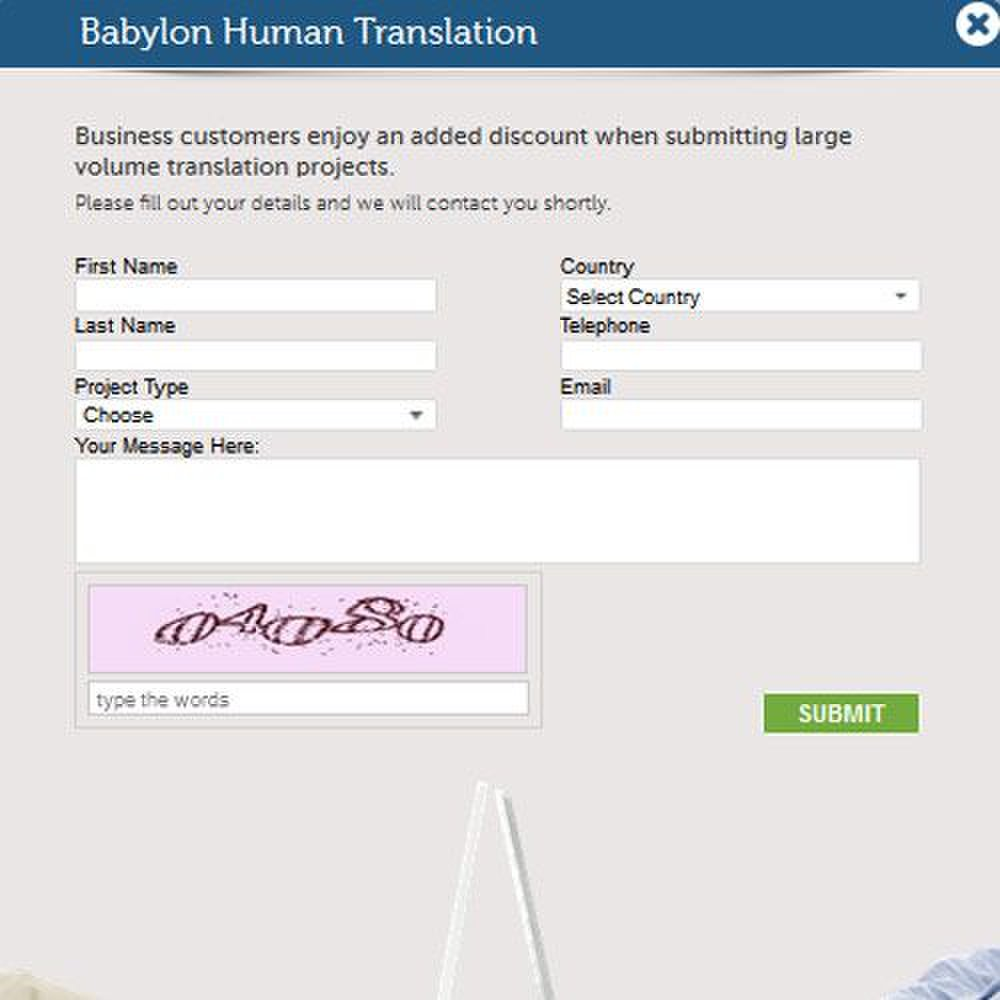 Babylon Professional Translation image: Discounts are available for large volumes.
