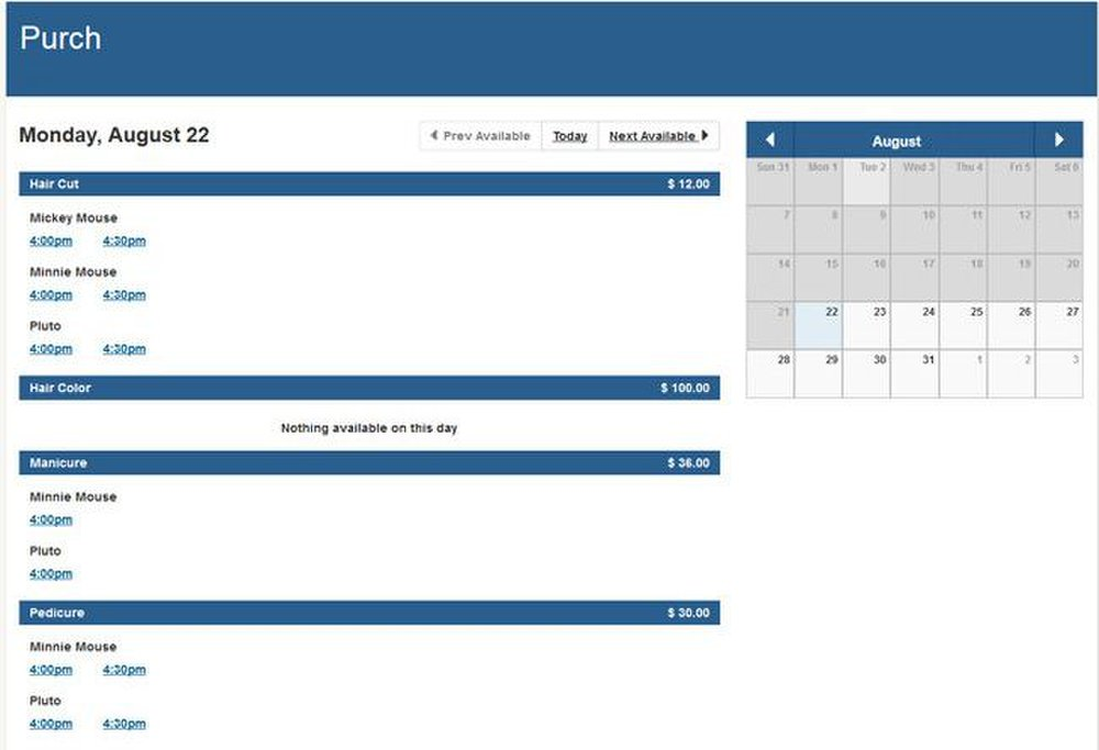BookedIN image: For each day, the scheduler shows available time slots for each of the services offered.