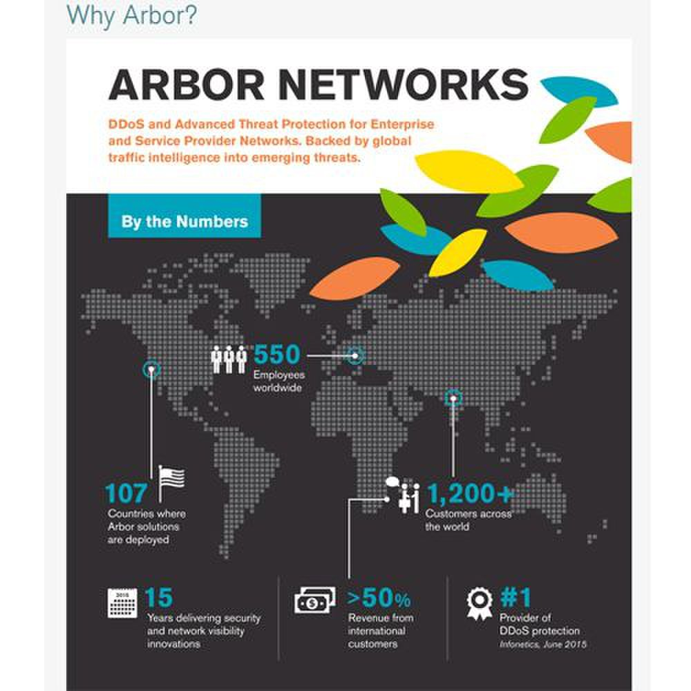 Arbor Cloud image: This graphic gives you basic information about the DDoS protection service.