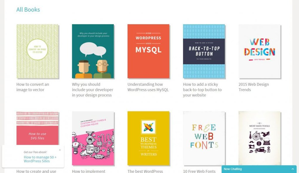Flywheel image: A variety of eBooks are available on Flywheel's website that can help you learn skills specific to blog hosting.