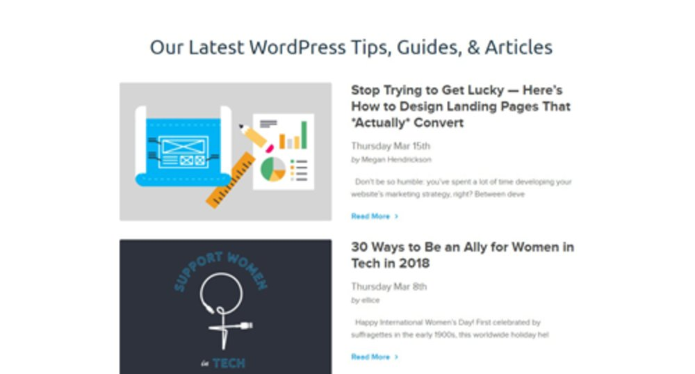 DreamHost has a lot of support options for customers. There is a blog with tips, guides and articles to help you troubleshoot various issues with WordPress. You can also contact a representative via live chat.