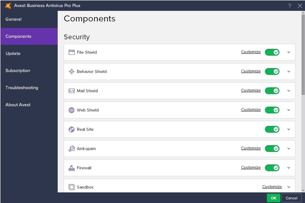 Avast Business Antivirus Pro Plus offers numerous standard security functionalities, many of which are customizable.