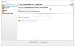 iBusiness Promoter image: You can use the Top 10 Optimizer tool to enhance keywords on your website.