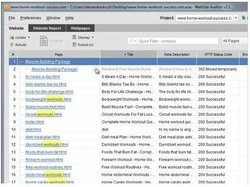 SEO PowerSuite image: Before you choose your keywords, PowerSuite shows you how competitive they will be on your website.