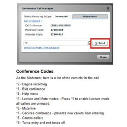MegaMeeting image: You can mute attendees or secure the conference via codes on the phone.