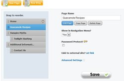 This image shows the section of Weebly Pro that allows you to organize your pages and sub pages.