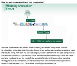 Mint Social image: The visibility multiplier that Mint Social employs helps you grow your social media followers.