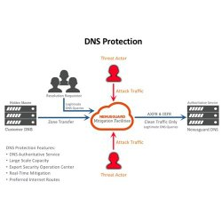 Nexusguard ClearDDoS image: The service provides DNS protection to redirect your traffic to a safe location.