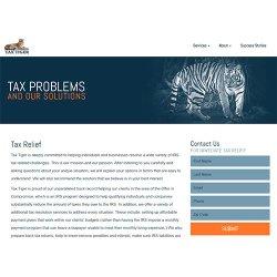 Tax Tiger image: This company can help you prepare back tax returns, negotiate for an offer in compromise and work on other solutions to your tax problem.