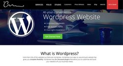 The Creative Momentum image: If you want to update your WordPress website and maintain it yourself, you can look into designs specifically for WordPress.