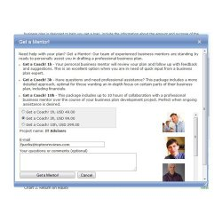 iPlanner.NET image: You have the option of hiring a mentor to give you one-on-one help.