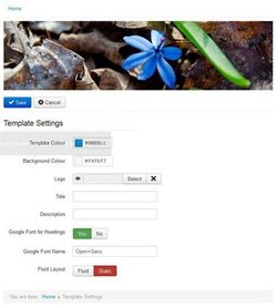 Joomla image: You can choose from a few premade templates.