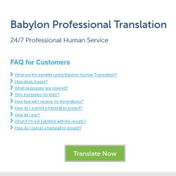 Babylon Professional Translation image: The FAQs page can answer many common questions.