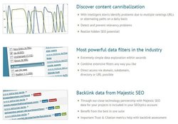 SEOlytics image: The program can give you information on backlinks and other important information, which can help you unlock SEO potential.