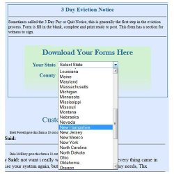 TheEasyForms image: State-specific forms are available through this service.