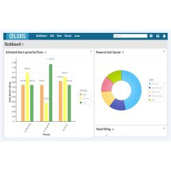 Celoxis image: Using the dashboard, managers can quickly see critical project information.