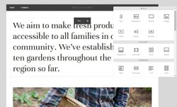 Squarespace image: You can add new sections to your site and alter its layout by adding blocks for text, images, image galleries and other widgets.