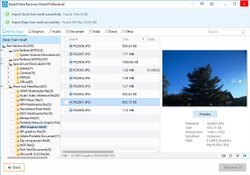 The file viewer lets you preview files first to ensure they're intact before you recover them.