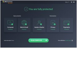 The software features five major protection categories on the dashboard. Each has a green checkmark to indicate that everything is safe. You can click on any category to reveal more options about the particular category.