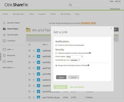 ShareFile lets you set the expiration date for a share link.