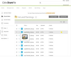 In ShareFile, hovering your mouse over a file provides a thumbnail preview.