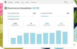 MailChimp provides statistics so you can track the performance of your  email marketing campaigns.