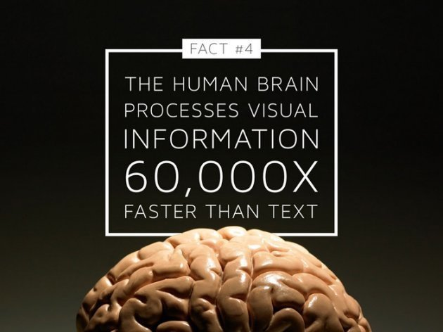 Fact: The Human Brain processes visual information 60,000 faster than text. Pic of a brain.