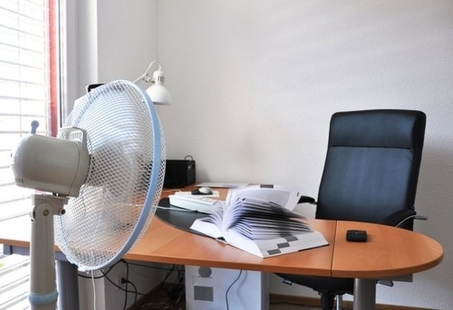 Bosses have long known that worker productivity plummets when temperatures soar in the summer.