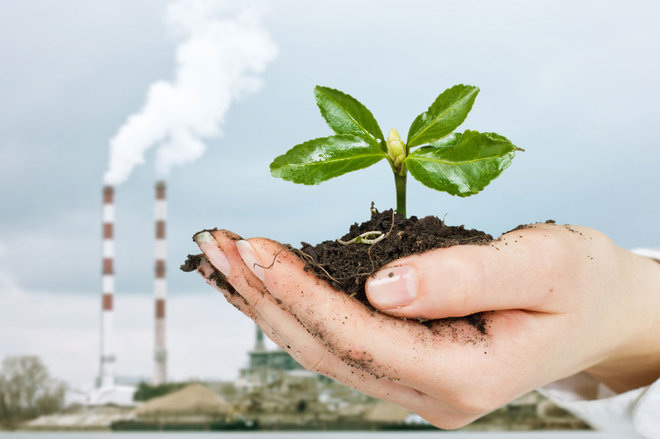 Employees Want Companies to Start Thinking Green
